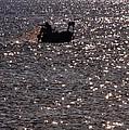 Fisherman by Stelios Kleanthous