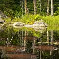 Fisherman's Dream Trout Pond by Randall Nyhof