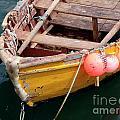 Fishing Boat by Carlos Caetano