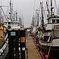 Fishing Boat Walkway by Randy Harris