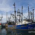 Fishing Boats At Dock by Tim Mulina