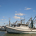 Fishing Boats At The Gulf Of Mexico by Andre Babiak