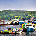 Fishing Boats In Newfoundland by Elena Elisseeva