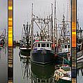 Fishing Boats In Steveston Group Photo by Randy Harris
