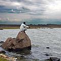Fishing by Johnson Moya