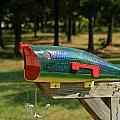 Fishing Lure Mailbox 2 by Douglas Barnett