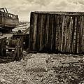 Fishing Remains At Dungeness by David Turner