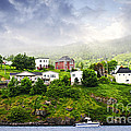 Fishing Village In Newfoundland by Elena Elisseeva