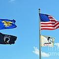 Flags Flying High by Lynda Dawson-Youngclaus