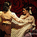 Flamenco Series No 3 by Mary Machare
