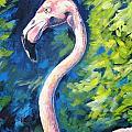 Flamingo by Marsha Hale