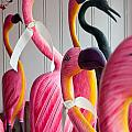 Flamingoes by Susan Cole Kelly