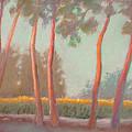 Flanders Cornfield by Randel Rogers