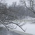 Flat River In Winter No.026 by Randall Nyhof