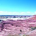 Flatlands In The Arizona Painted Desert by Merton Allen