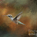 Flight Of The Angel  by Cris Hayes
