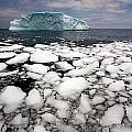 Floating Ice Shattered From Iceberg by John Sylvester