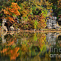 Floating Leaves In Tranquility by Peggy Franz