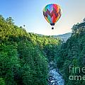 Floating Over Quechee Gorge by Susan Cole Kelly