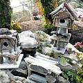 Flock Of Rustic Birdhouses by Elaine Plesser