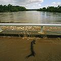 Flood Waters Rise To Meet A Bridge by Randy Olson