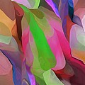 Floral Abstraction by David Lane