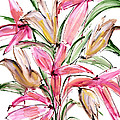 Floral Fourteen by Lynne Taetzsch