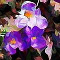 Floral Jam by David Lane