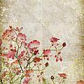 Floral Pattern by Setsiri Silapasuwanchai