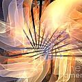 Floral Supernova by Kim Sy Ok