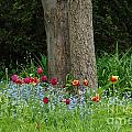 Floral Surrounding by Grace Grogan