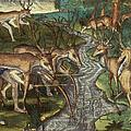 Florida: Hunters, C1591 by Granger