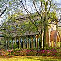 Florida The Baughman Center by Russell Grace