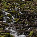 Flow Of Life by Mike Reid