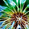 Flower - Dandelion Tears - Abstract by Paul Ward
