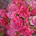 Flower 290 by Joyce StJames
