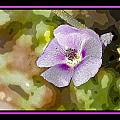 Flower 4 by Larry White