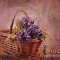 Flower Basket by Judi Bagwell