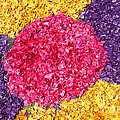 Flower Carpet by Gaspar Avila