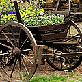 Flower Cart by Design Windmill
