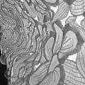 Flower Lace by April  Julian