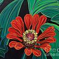 Flower O by David Karasow