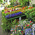 Flower Stand In Paris by Elena Elisseeva