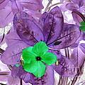 Flower1 by Dawn Hough Sebaugh
