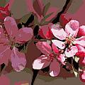 Flowering Crabapple Posterized by Mark J Seefeldt
