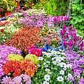 Flowers At Market by Michael Garyet
