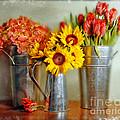 Flowers In Cans by Jill Battaglia