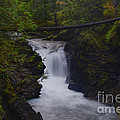 Flowing by Diane Smith