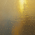 Flowing Gold 7646 by Michael Peychich
