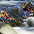 Flowing River IIi by David Pringle